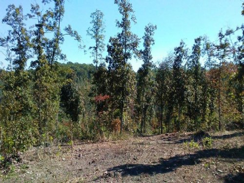 14 Acres With Year Round Creek : Cabool : Texas County : Missouri