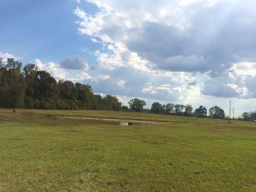 Pasture Land For Sale Pike County M : Magnolia : Pike County : Mississippi
