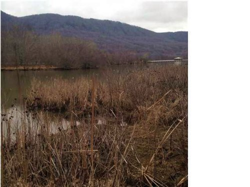 8.29+/- Acres On Nick-a-jack Lake : Whitwell : Marion County : Tennessee