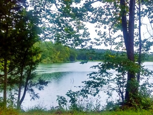 Great Lot For Day Retreat : Highland : Sharp County : Arkansas