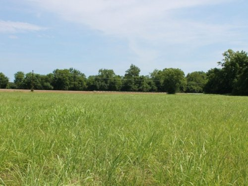 8.96 Acres Mccoy Creek : Clarksville : Red River County : Texas