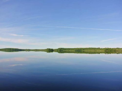 Mls 168605 - Lots 1&2 Buckskin Lk : Land O Lakes : Vilas County : Wisconsin