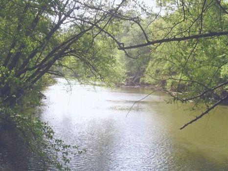 4 Acres on Enitichopco Creek Shoals : Alexander City : Tallapoosa County : Alabama