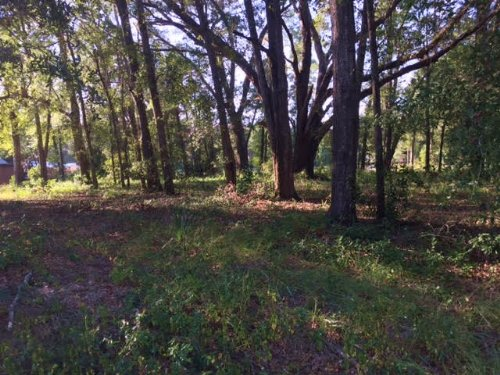 Residential Wooded Lot : Live Oak : Suwannee County : Florida