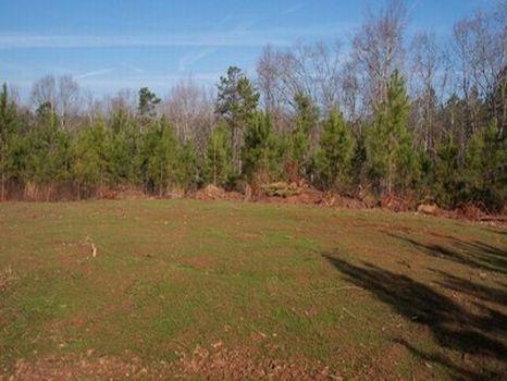 4.5 Acre Minifarm/Homesite - Lot 12 : Alexander City : Tallapoosa County : Alabama