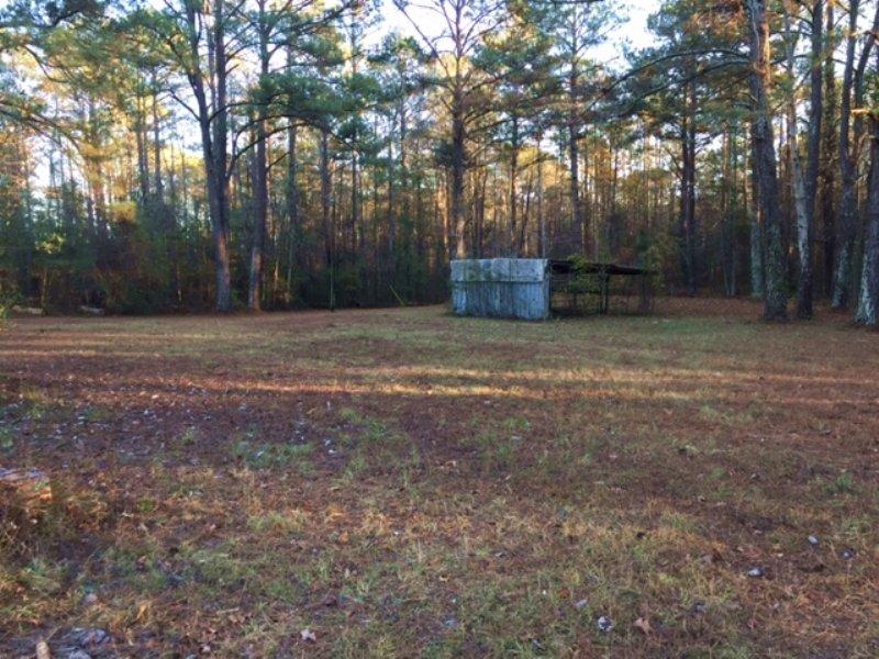 Merriweather Rd Tract : Highland Home : Crenshaw County : Alabama