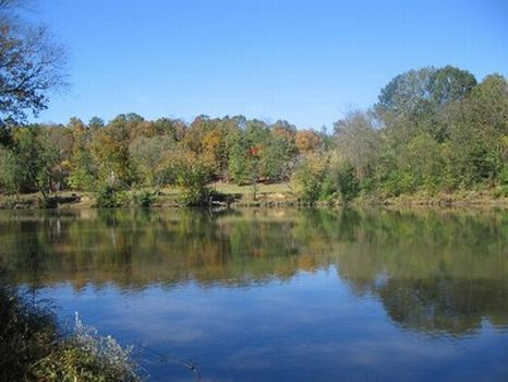 10-50 Acres on the Tallapoosa River : Alexander City : Tallapoosa County : Alabama