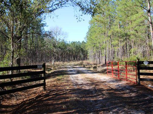 Parcel 4 Oak Creek Containing 11 Ac : Starke : Bradford County : Florida