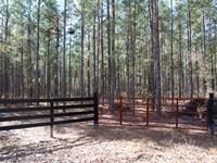 Parcel 6 Oak Creek 12 Acres : Starke : Bradford County : Florida