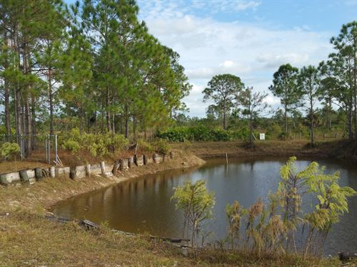 9 Acres Land Plus 4000Sf Bldg : Fort Myers : Lee County : Florida