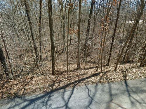 .06 Acres In Cherokee Village, AR : Cherokee Village : Sharp County : Arkansas