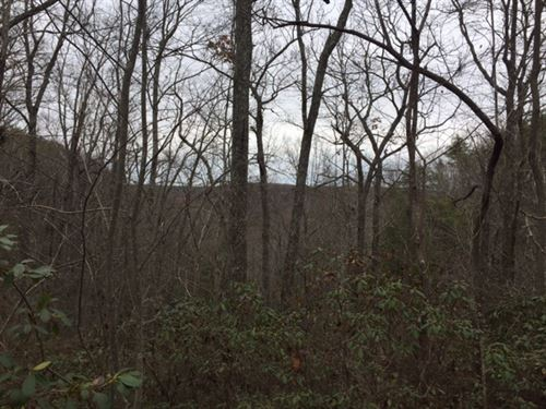 5.35+/-Acres With Pristine Views : Monteagle : Grundy County : Tennessee