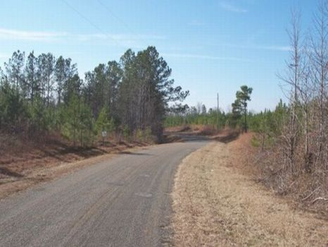 11 Acre Minifarm/Homesite - Lot 18 : Alexander City : Tallapoosa County : Alabama