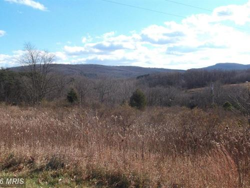 Look At This Buildable Lot : Augusta : Hampshire County : West Virginia