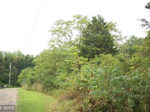 Wooded Lot With Five Acres : Romney : Hampshire County : West Virginia