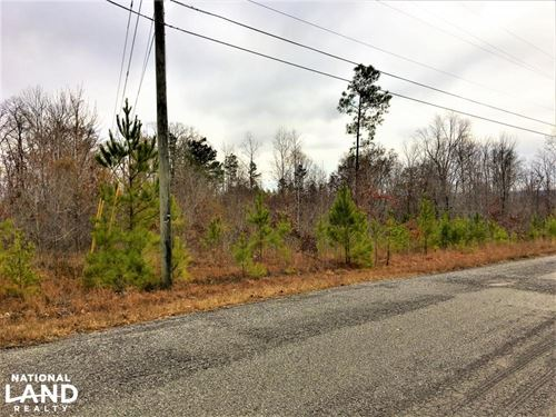 19.03 Acres Commercial Opportunity : Warrior : Blount County : Alabama