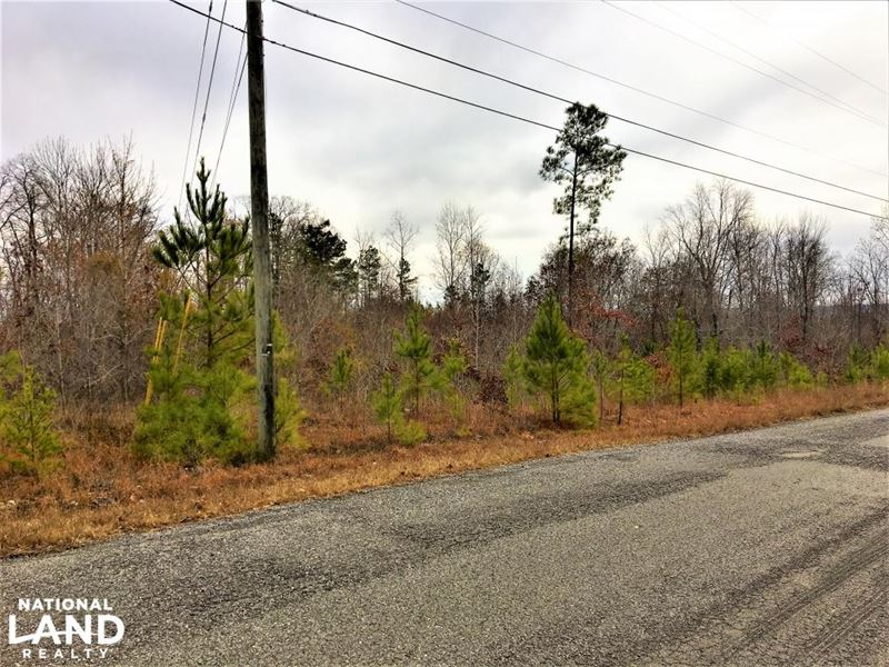 1.70 Acres Commercial Opportunity : Warrior : Blount County : Alabama