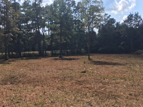 5.28 Acres- Amite County, Ms : Liberty : Amite County : Mississippi
