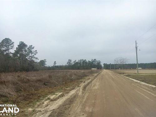 Johnson Family Farm : Loris : Horry County : South Carolina