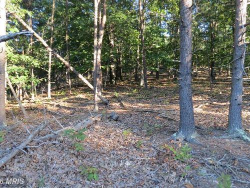 Wooded 6 Acre Lot : Burlington : Hampshire County : West Virginia