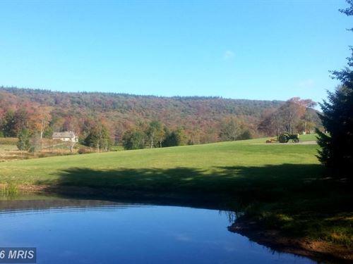 Liquidation Sale : Davis : Tucker County : West Virginia