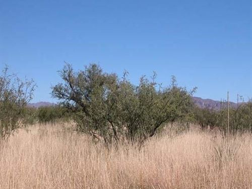 5 Acres In Chaves County, Nm Profit : Roswell : Chaves County : New Mexico