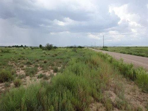 Large 10 Arce Parcel : Douglas : Cochise County : Arizona