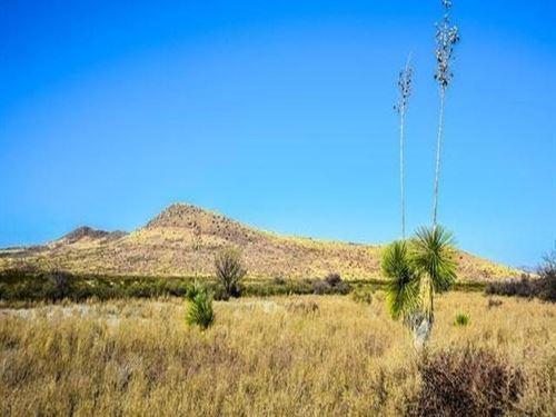 Huge 10 Acre Parcel : Douglas : Cochise County : Arizona