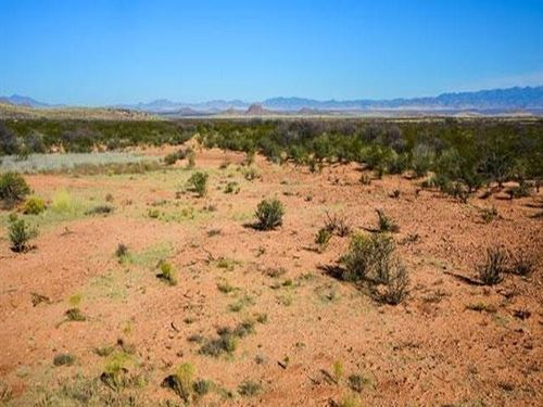 Cochise County, Az 10 Acre Parcel : Douglas : Cochise County : Arizona