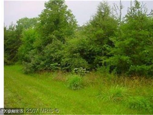 Level Wooded Lot : Levels : Hampshire County : West Virginia