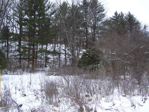 Build On This Lake Redstone Lot : La Valle : Sauk County : Wisconsin