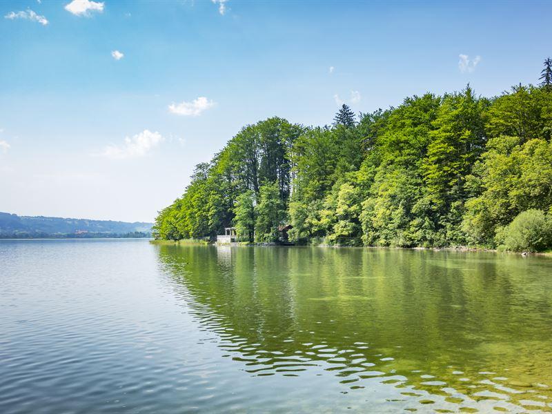 Spectacular Nc Lakefront Getaway : Lakefront : Burke County : North Carolina