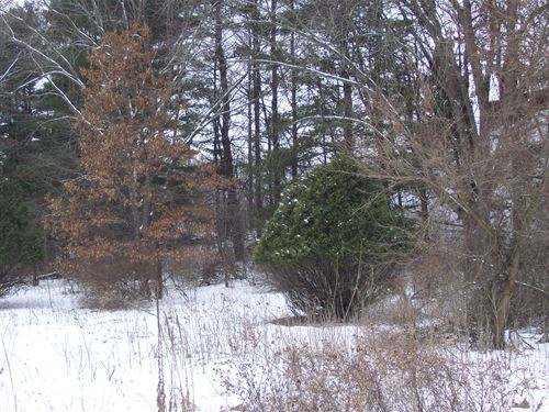 Lake Redstone Vacant Lot : La Valle : Sauk County : Wisconsin