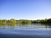 Smith Lake Waterfront Homesite : Double Springs : Winston County : Alabama
