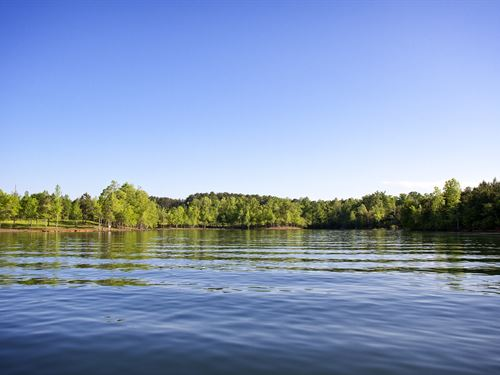 Smith Lake Waterfront Homesite : Double Springs : Winston County : Alabama