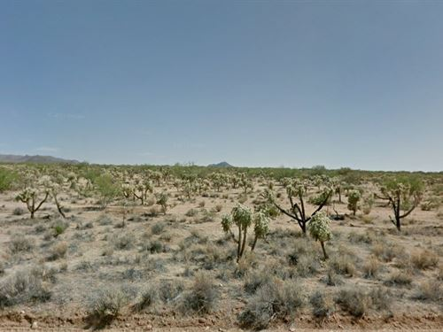 Over An Acre In Tucson, Az : Tucson : Pima County : Arizona