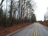 6 Acre Wooded Tract In Pauline, Sc : Pauline : Spartanburg County : South Carolina
