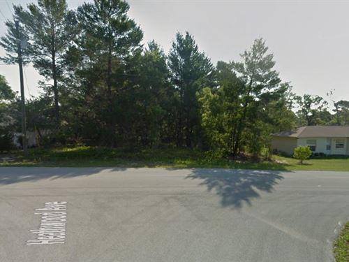 Hernando County, Florida $43,000 : Spring Hill : Hernando County : Florida