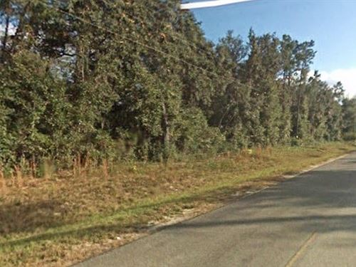Marion County, Florida $6,500 : Fort Mccoy : Marion County : Florida
