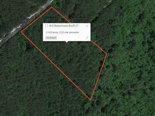 Private Wooded Lot Ready For Your : Marietta : Greenville County : South Carolina