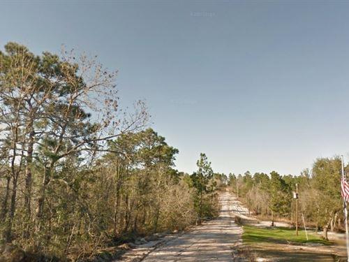 .74 Acre In Interlachen, Fl : Interlachen : Putnam County : Florida
