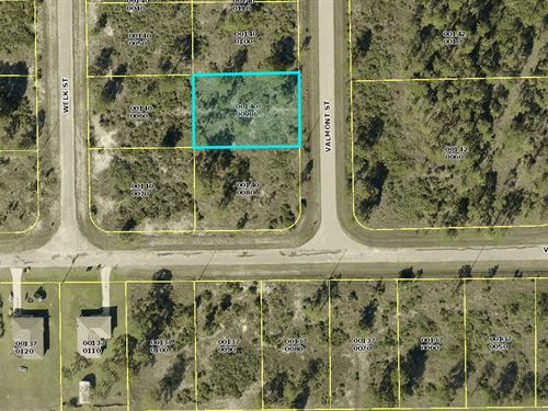 Vacant Lot For Sale In Florida : Lehigh Acres : Lee County : Florida