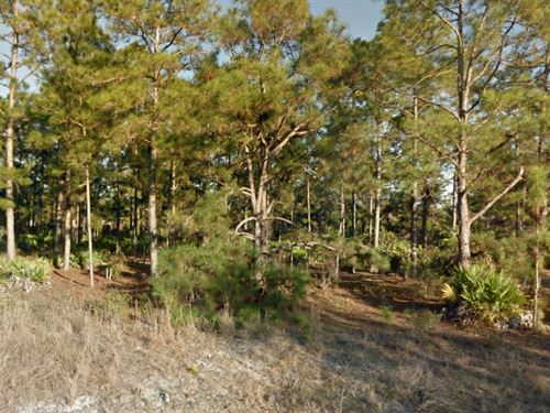 4 Lots Together In Lehigh Acres : Lehigh Acres : Lee County : Florida