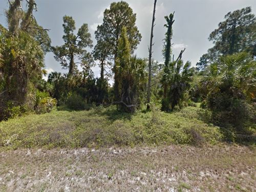 11 Lot Together For Sale : Port Charlotte : Charlotte County : Florida