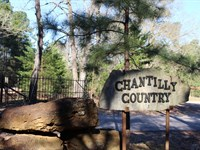 Chantilly Country : Conroe : Montgomery County : Texas