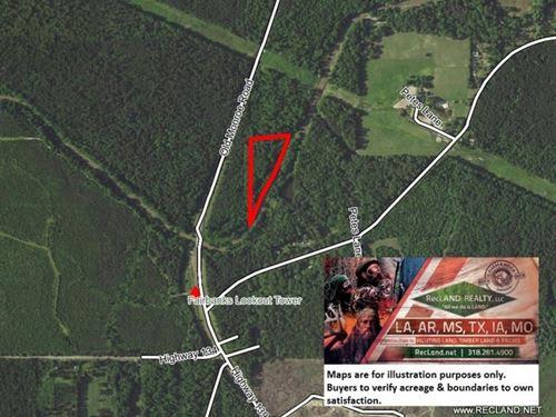 6.2 Ac - Wooded Tract Along Bayou W : Swartz : Morehouse Parish : Louisiana