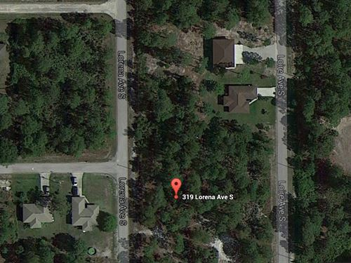 Wholesale Deal In Florida 58 Lots : Poinciana : Polk County : Florida