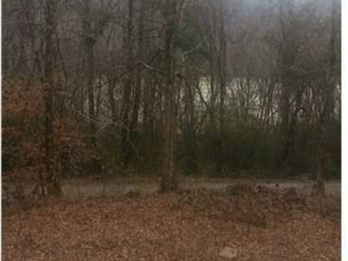 5.47+/- Acres Lake View Property : Whitwell : Marion County : Tennessee