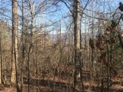 1.15+/- Acres Unrestricted W/ Views : Whitwell : Marion County : Tennessee