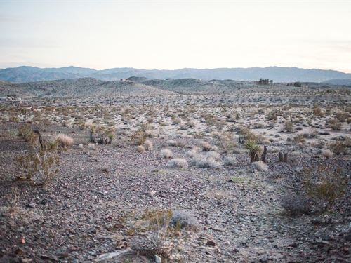 Joshua Tree 5 Acres Water & Power : Joshua Tree : San Bernardino County : California
